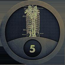 Level 5 on Anatomy of Backbone.JS Part 2