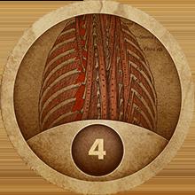 Level 4 on Anatomy of Backbone.js